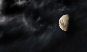 Quand on lui montre la Lune, l'imbécile ne regarde même plus le doigt.