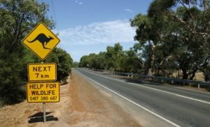 Suivez ADG en Australie !