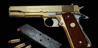 newton usa armes