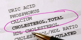 cholesterol sante maladie