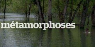 metamorphose film honore