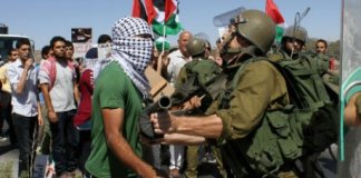 nissim zvili israel palestine