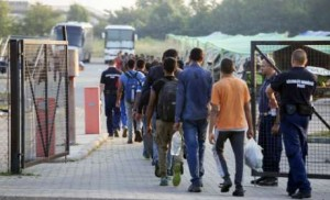 hongrie orban immigration