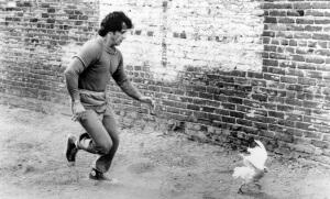 Rocky II de SylvesterStallone avec Sylvester Stallone 1979.