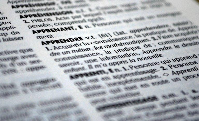 Les nouveaux mots du dictionnaire novlangue de la politique 2017