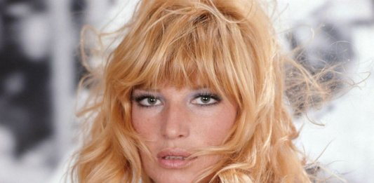 monica vitti canard orange