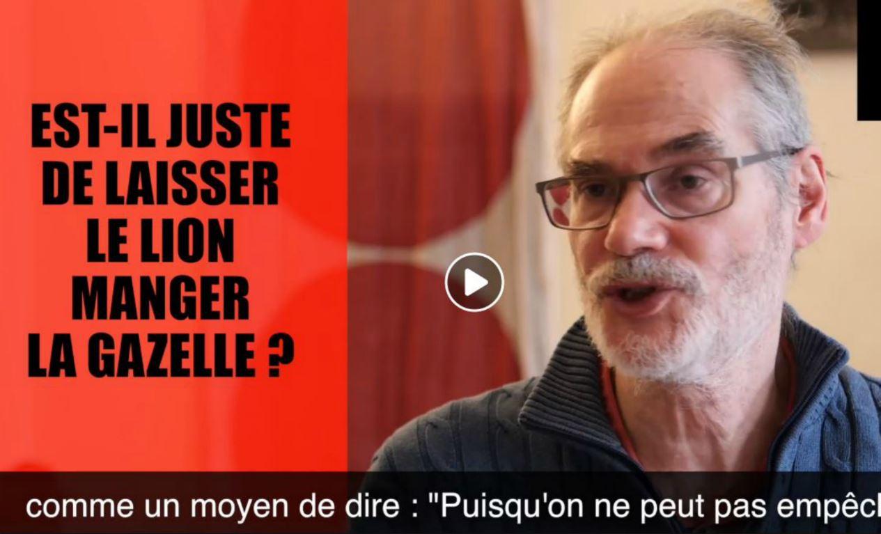 L'antispéciste David Olivier sur Iamvegan TV / Capture d'écran Facebook