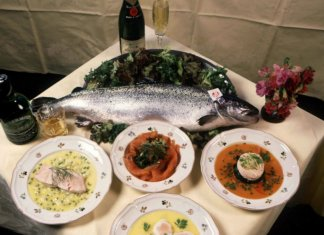 saumon elevage chili