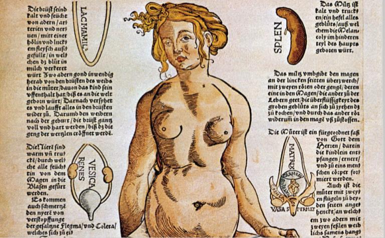 Hymen, vagin, utérus… N'utilisez plus ces termes pas assez progressistes!