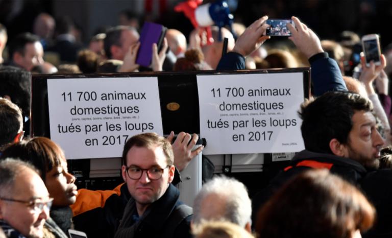 Animalisme: ils veulent interdire la viande et le cirque
