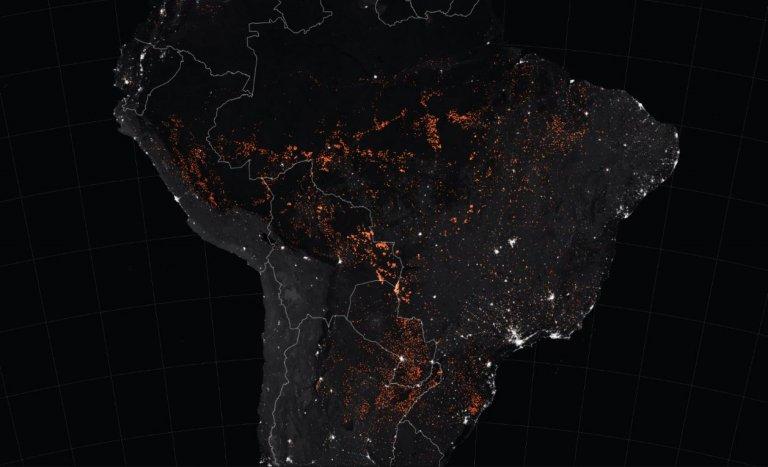 Amazonie: l'avenir de l'Intelligence artificielle?