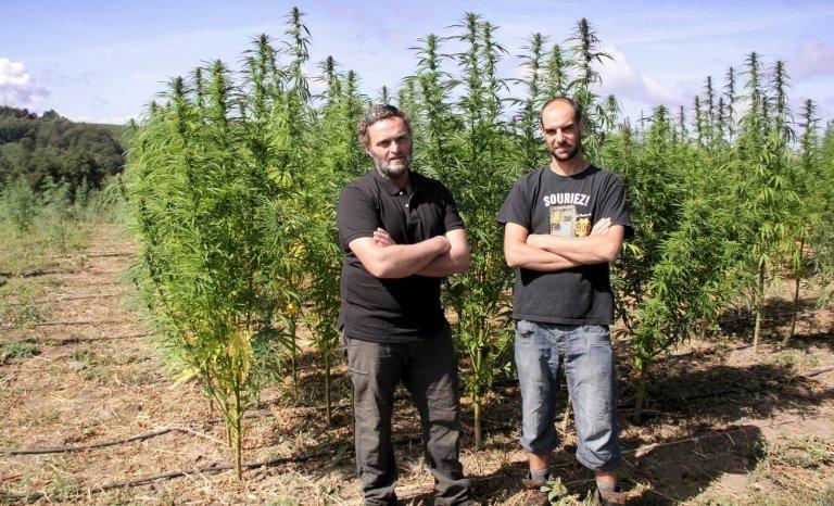 Le cannabis sauvera-t-il la Creuse?