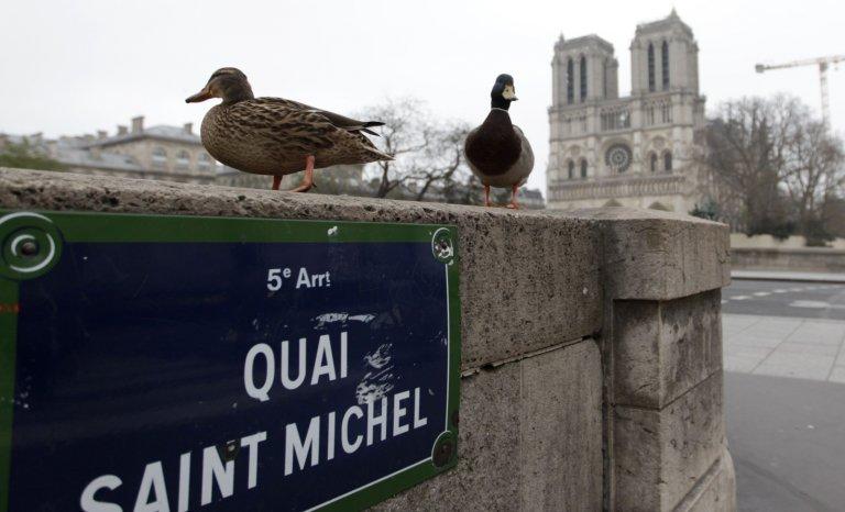 Confinement: la qualité de l'air ne s'est pas améliorée à Paris