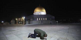jacquot grunewald israel palestine