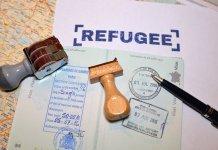 observatoire immigration demographie