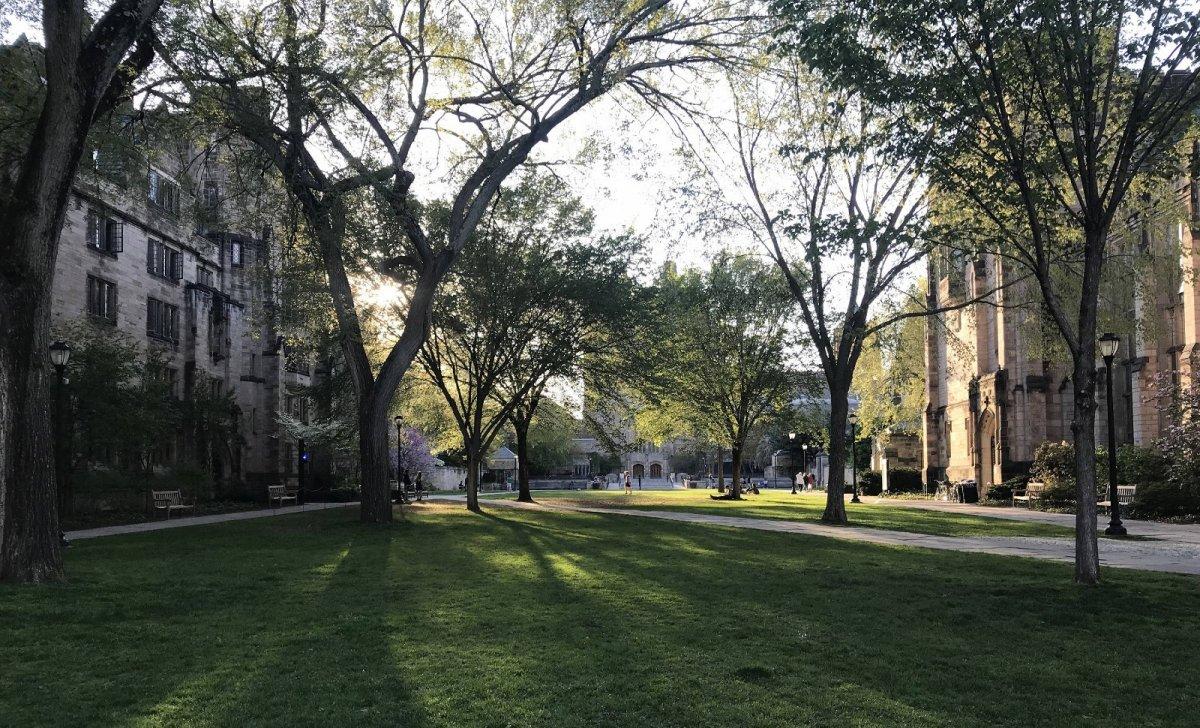 universite yale racisme woke