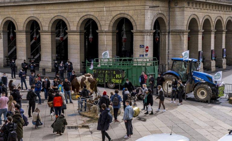 Cantines de Lyon: le bal des faux-culs