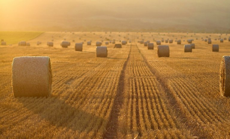 Défendre l'environnement en défendant l'agriculture: c'est possible!