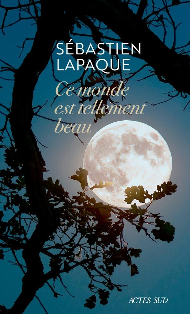Sebastien-Lapaque-livre-Causeur-89